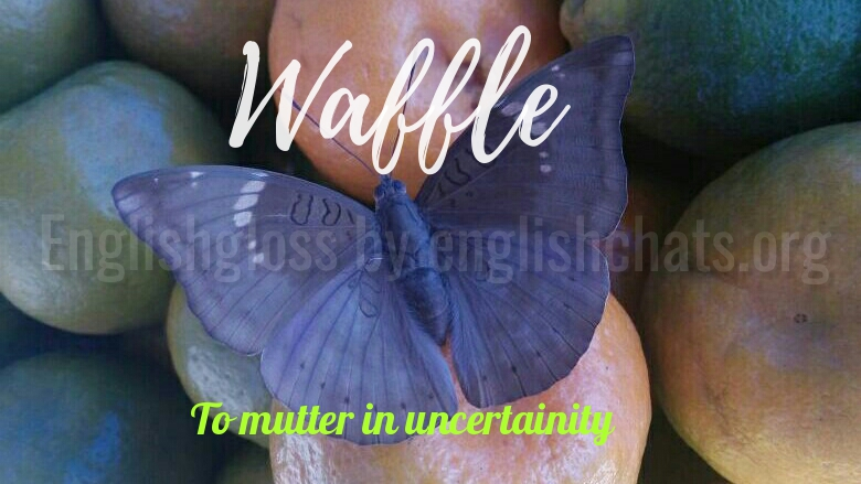 Word of the day- Waffle